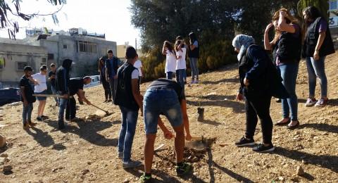 الناصرة - جمعية انماء تغرس ثلاثة عشرة شجرة زيتون بعدد ارواح الشهداء