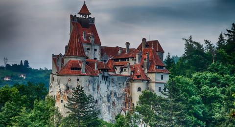 قلعة دراكولا في رومانيا مسكونة بالدببة