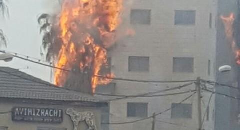 حريق يلتهم شجرة نخيل في العفولة ويقترب من بناية سكنية