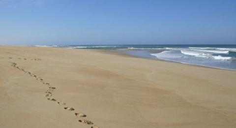 شاطئ يعود للظهور بعد اختفائه مدة 33 سنة