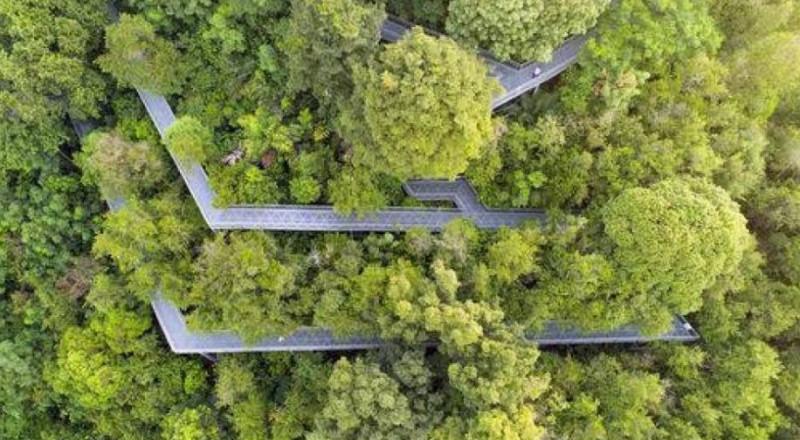 5 حدائق مميزة بتصاميمها حول العالم