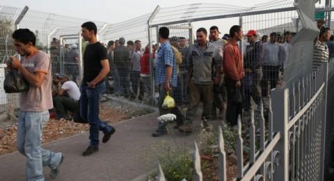 117 ألف عامل من الضفة وغزة في إسرائيل