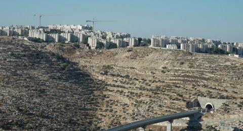 محام ومواطنين من الطيرة وجلجلوية وآخر يهودي .. احتالوا وزيّفوا ببيع وشراء أراض في الضفة