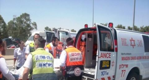 أور يروك: خلال العقد الأخير، أصيب 11 ألف شخص بحوادث