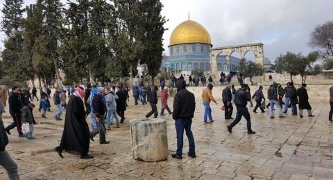 إسرائيل تخصص 190 مليون دولار لتعزيز الوجود اليهودي بالقدس