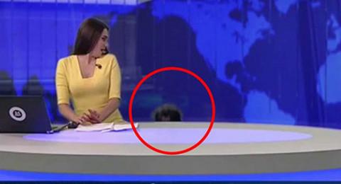 كلب يقتحم نشرة الأخبار ويفاجئ مذيعة روسية