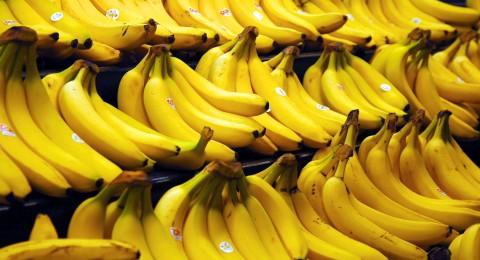 كلوا الكثير من الموز .. هذه الفاكهة قد تنقرض خلال أعوام