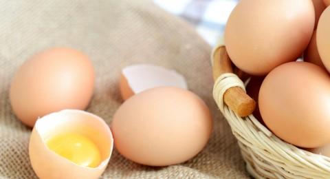 ماذا لو سُلق البيض بالفرن؟