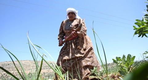 في يوم الأرض: 620 ألف مستوطن إسرائيلي يقيمون في أراضي الدولة الفلسطينية
